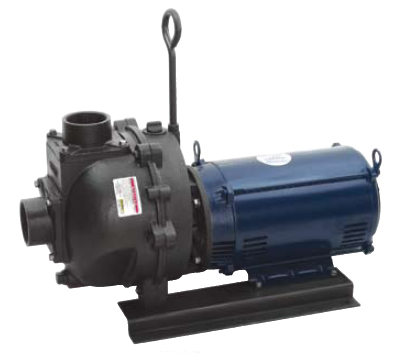 333 Series Cast Iron Close Coupled Electric Driven Pumps