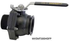 MVSMT300HSFP Image